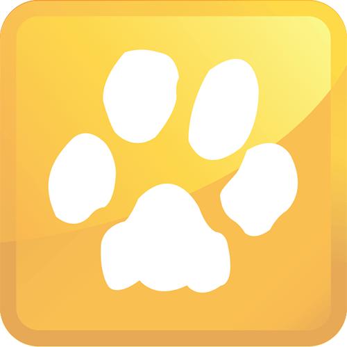 pet urine removal icon
